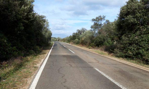 Obnova ceste