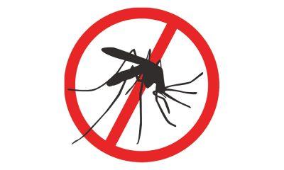 adulticidna dezinsekcija komarci
